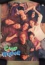 Сериал «Лагерь Уайлдер» (1992 – 1993)