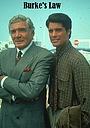 Серіал «Правосудие Берка» (1994 – 1995)