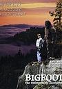 Фільм «Снежный человек: Незабываемая встреча» (1995)