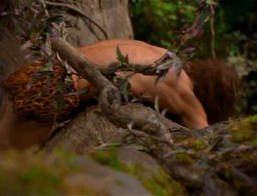 «Джордж из джунглей» — кадры
