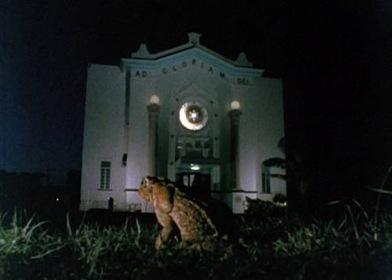 «Тростниковые жабы» — кадри
