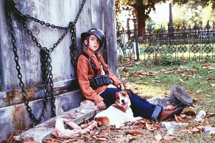 «Мой пёс Скип» — кадры