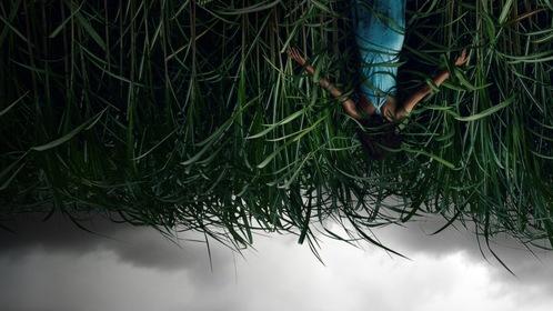 «У високій траві» — кадри