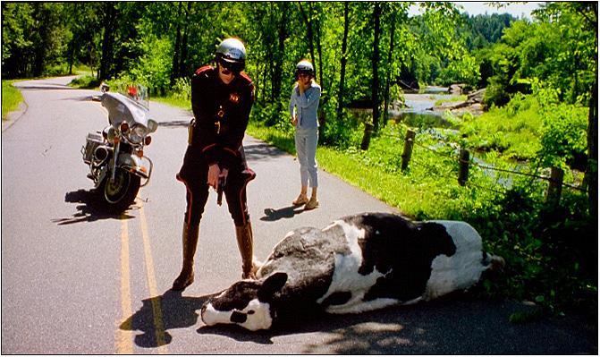 Фильм «Я, снова я и Ирэн» (2000): Джим Керри, Рене Зеллвегер 671x399