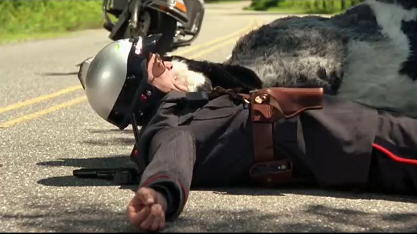 Фильм «Я, снова я и Ирэн» (2000): Джим Керри 850x480