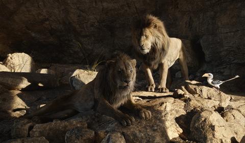 «Король Лев» — кадри