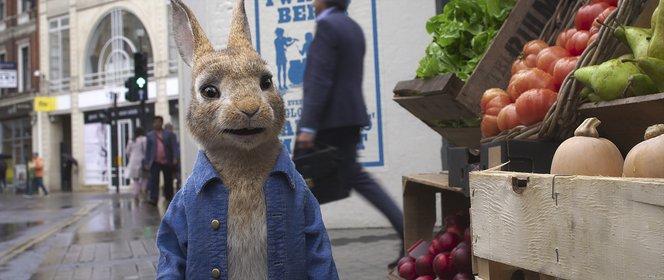 «Кролик Питер 2» — кадры