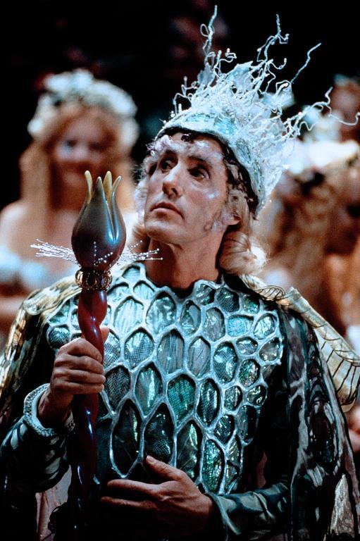 Серіал «Леприкони або чарівна легенда гномів» (1999): 511x768