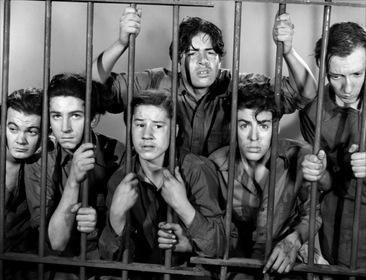 «Школа преступности» — кадры
