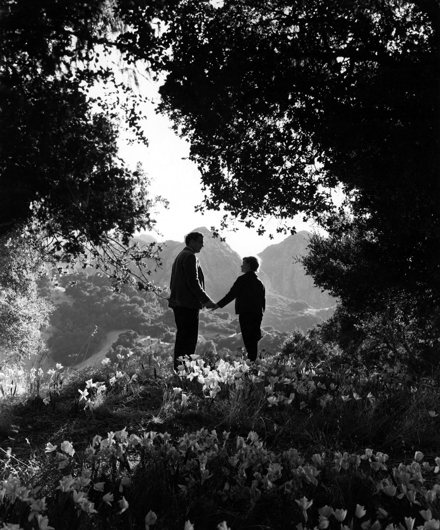 Фильм «Как зелена была моя долина» (1941): Уолтер Пиджон, Родди МакДауэлл 1497x1800