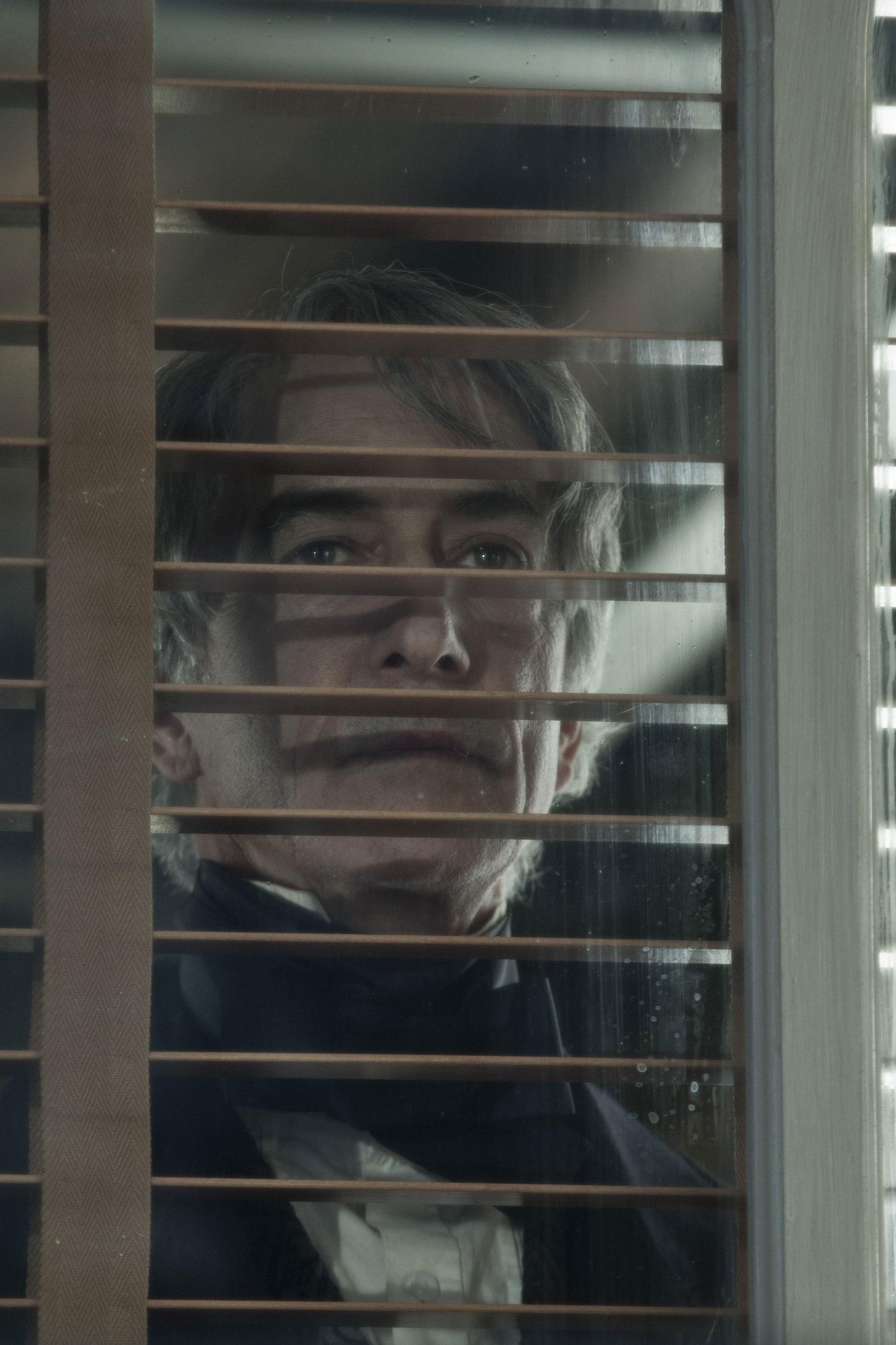 Фильм «Линкольн» (2012): Дэвид Стрэтэйрн 1500x2250