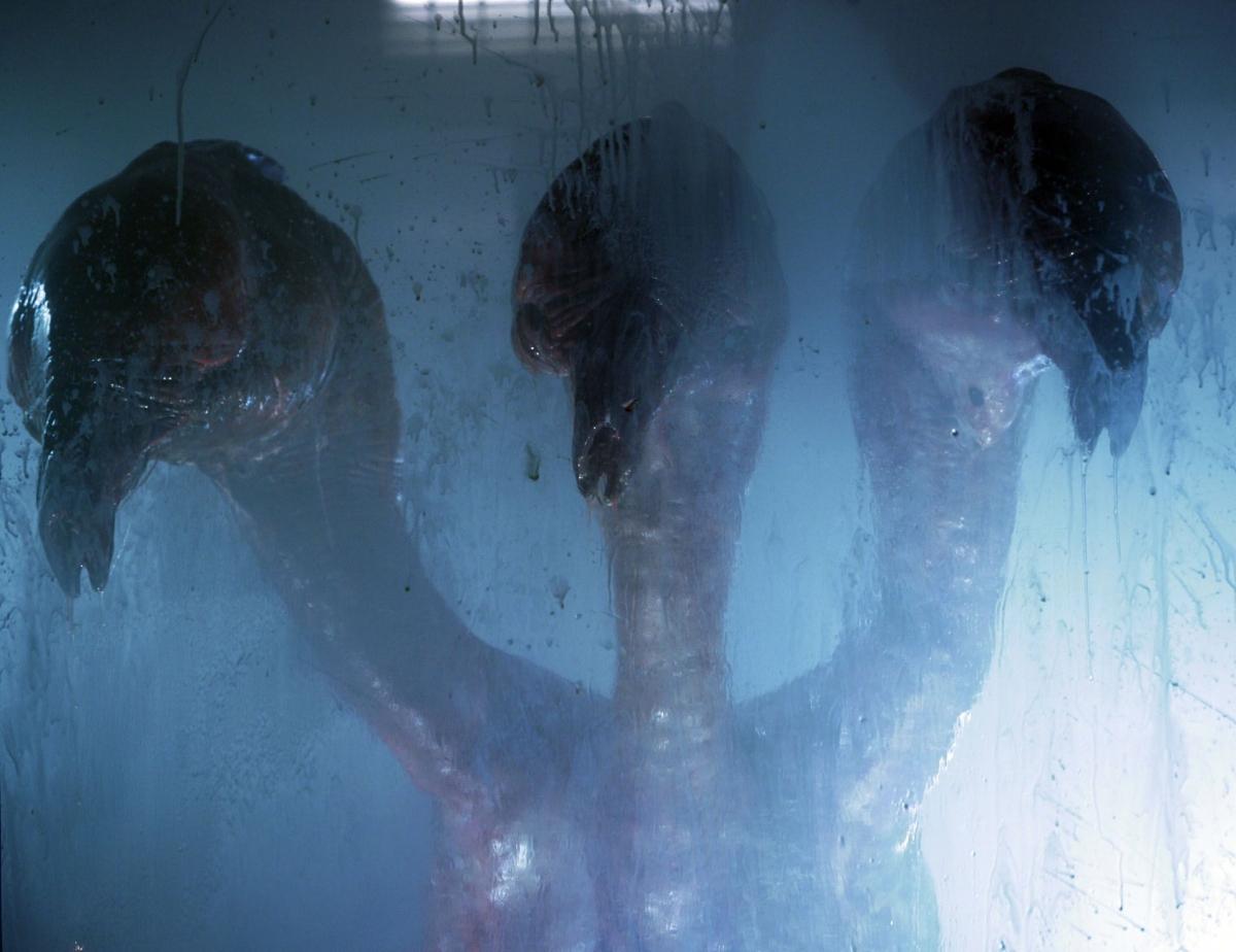 Серіал «Мисливці за чужими» (2006 – 2011): 3 сезон 1200x924