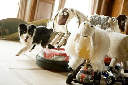 «Готель для собак» — кадри