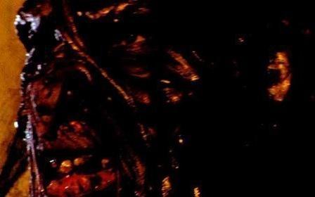 «Криптид» — кадри