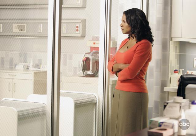 Серіал «Приватна практика» (2007 – 2013): Одра МакДональд 2 сезон, 1 епізод — «Семейная вещь» (A Family Thing) 640x445