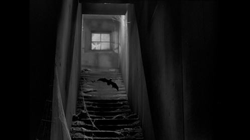 «Лабиринт» — кадри