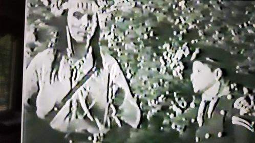 «Приключения Рин Тин Тина» — кадры