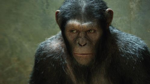 «Восстание планеты обезьян» — кадры