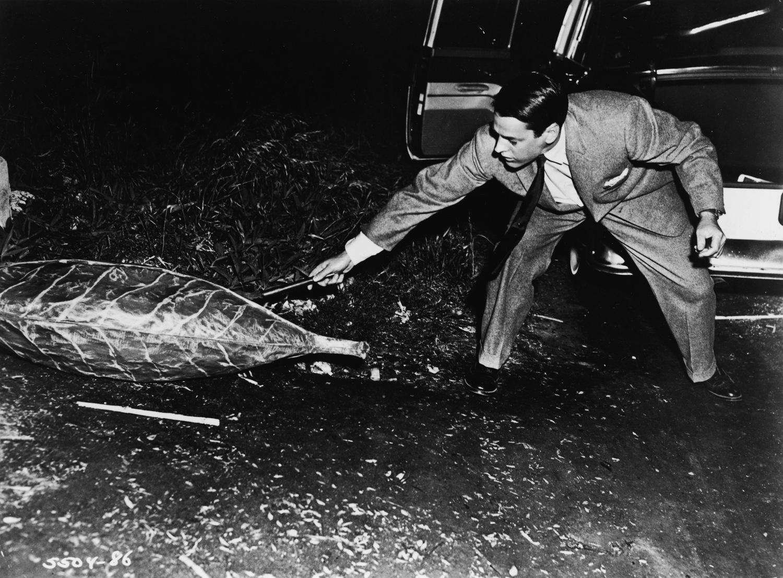 Фільм «Вторгнення викрадачів тіл» (1955): Кевін Маккарті 1500x1106