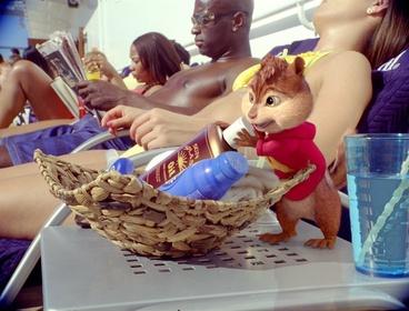 «Элвин и бурундуки 3» — кадры
