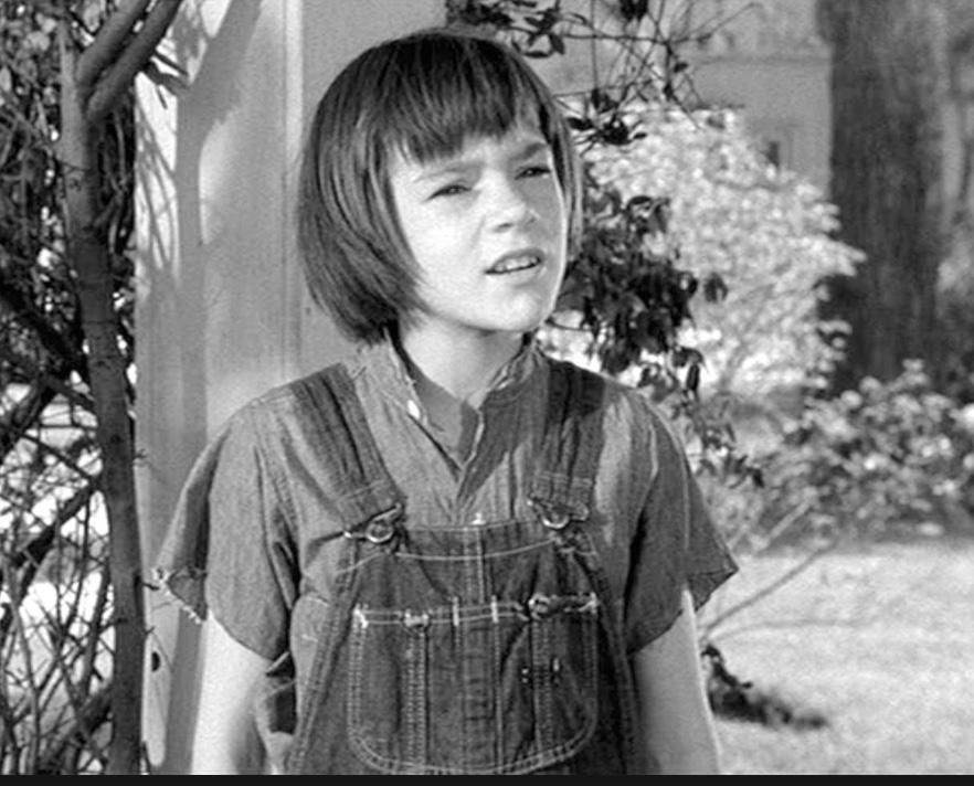 Фильм «Убить пересмешника» (1962): Мэри Бэдам 882x712