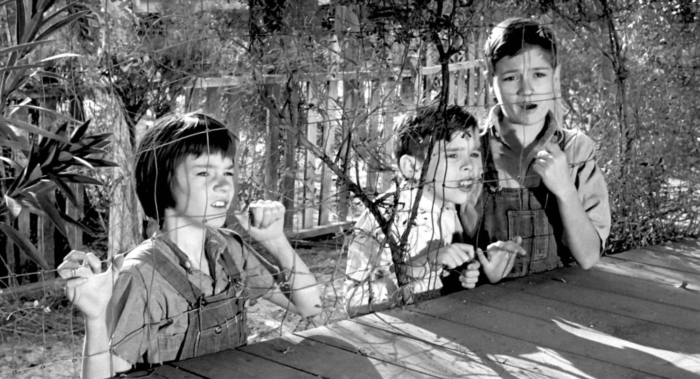 Фильм «Убить пересмешника» (1962): Филлип Элфорд, Джон Меджна, Мэри Бэдам 1500x813