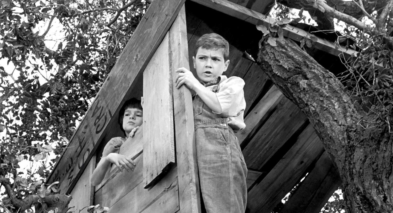 Фильм «Убить пересмешника» (1962): Филлип Элфорд, Мэри Бэдам 1500x813