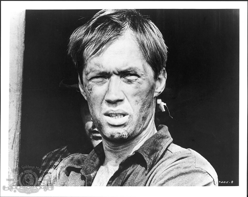 Фільм «Берта по прозвищу «Товарный вагон»» (1972): Девід Керрадайн 1023x816