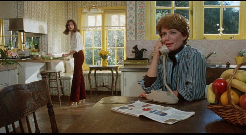 Фільм «Внутрішні закони» (1979): Ненсі Дюссо, Пенні Пейсер 800x442