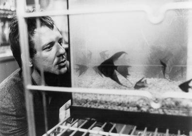 «Бойцовая рыбка» — кадры