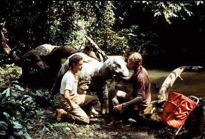 «Динозавр: Тайна затерянного мира» — кадри