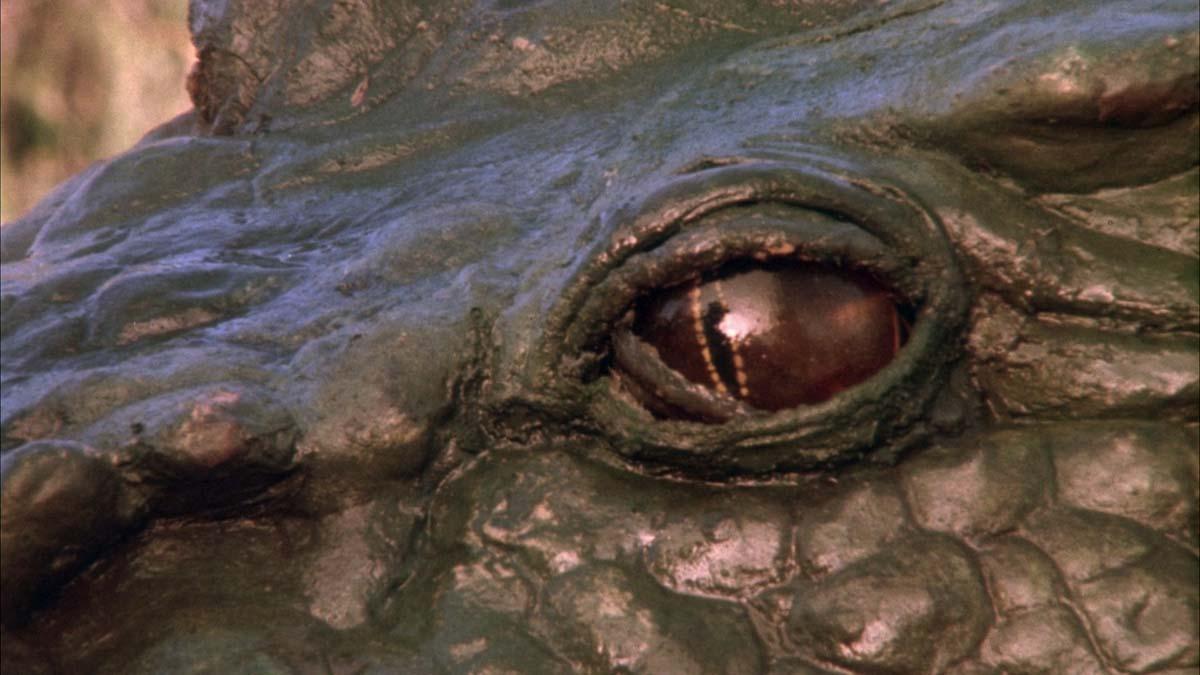 Фильм «Темные времена» (1987): 1200x675