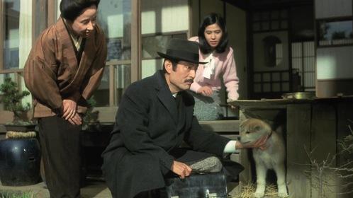 «История Хатико» — кадры