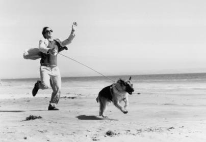 «К-9: Собачья работа» — кадры