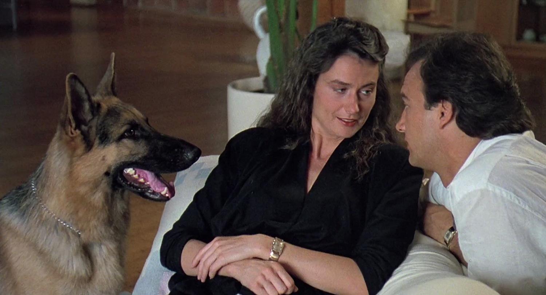 Фильм «К-9: Собачья работа» (1989): Котон, Джеймс Белуши 1500x813