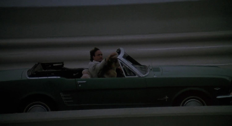 Фильм «К-9: Собачья работа» (1989): Джеймс Белуши, Котон 1500x813
