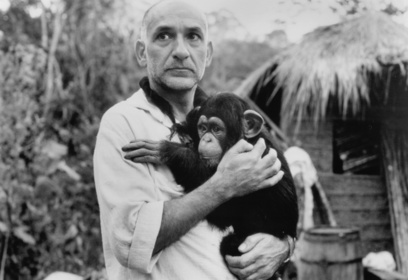 «Пятая обезьяна» — кадри