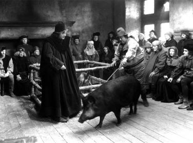 «Час свиньи» — кадры